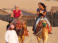 Camel Rides In Dubai Camel SafariRide In Dubai
