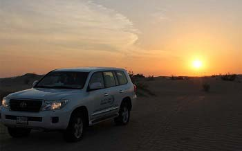 Evening Desert Safari tour with Bbq Dinner and live shows